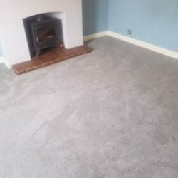Living Room Carpet - Carpet - Primo Ultra - Ultra Shadow